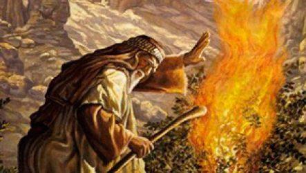Пророк Моисей – история его жизни