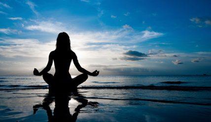 Карма-йога, вчення та практика