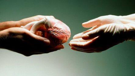 Эпоха трансплантологии