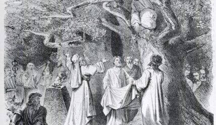 Культ дикого кабана у кельтів