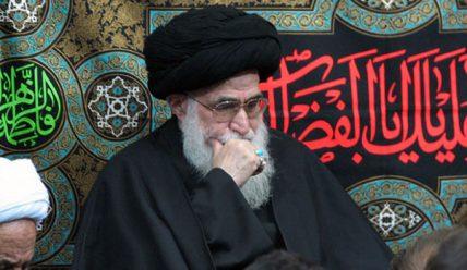 Садик Рохани — шиитский богослов и марджа (Биография).